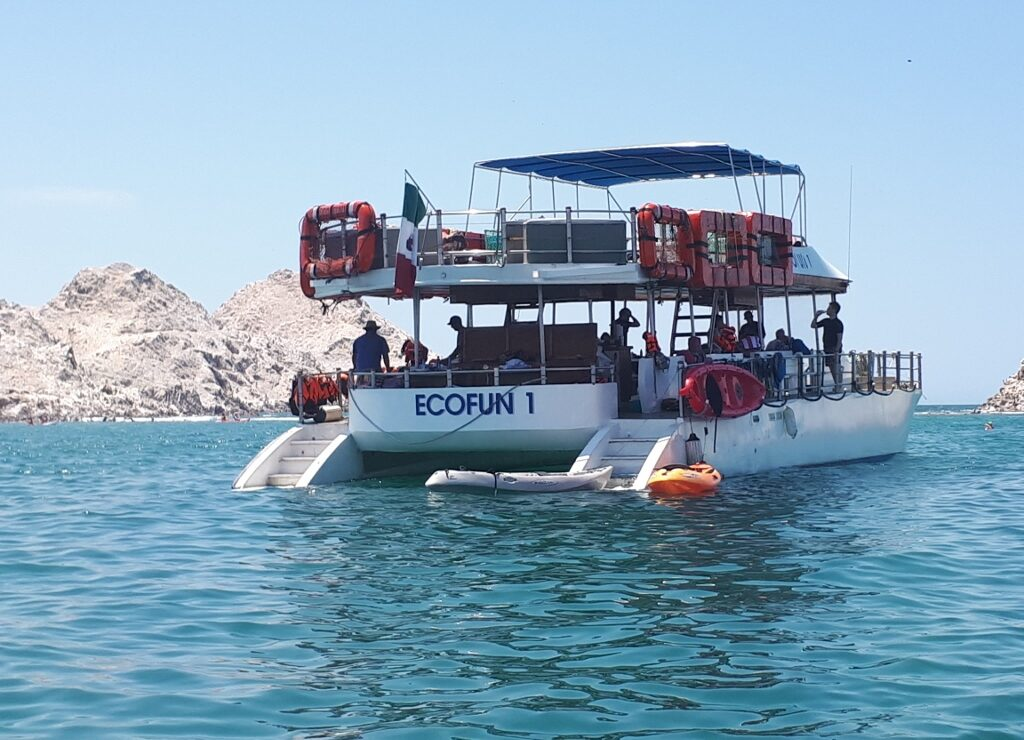 Backboat